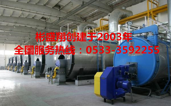 锅炉除垢剂LZ801在线运行清洗
